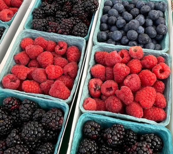 raspberries_finca_bonita